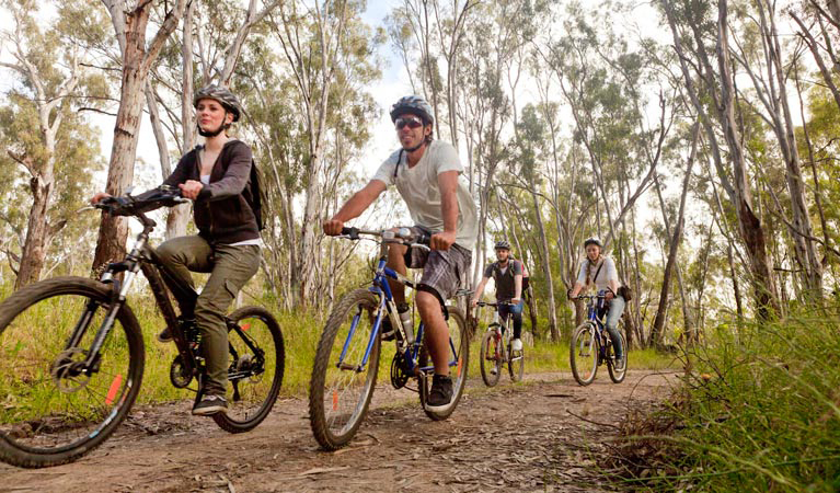 Group of people riding bike, Boomanoomana State Forest